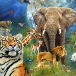 Le monde des animaux
